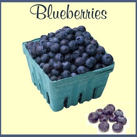 THE BLUEBERRY – A HEALTHY LITTLE FRUIT