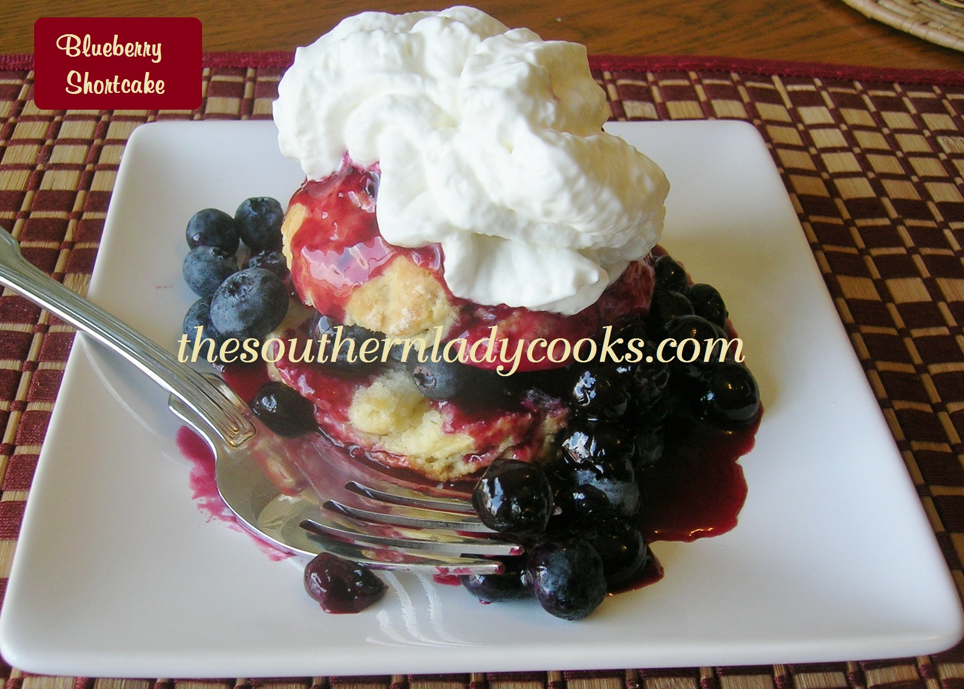 BLUEBERRY SHORTCAKE | The Southern Lady Cooks