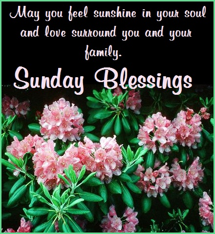 SUNDAY MORNING BLESSINGS by The Southern Lady Cooks