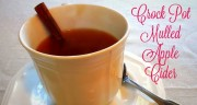 CROCK POT MULLED APPLE CIDER