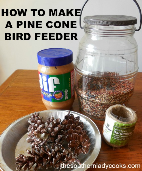 MAKE YOUR OWN PINE CONE BIRD FEEDER